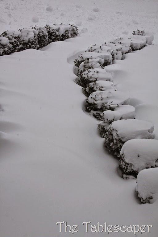 January Snow Storm Juno 011