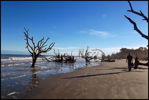 Hunting Island site 88 028