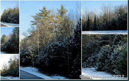 snow collage2