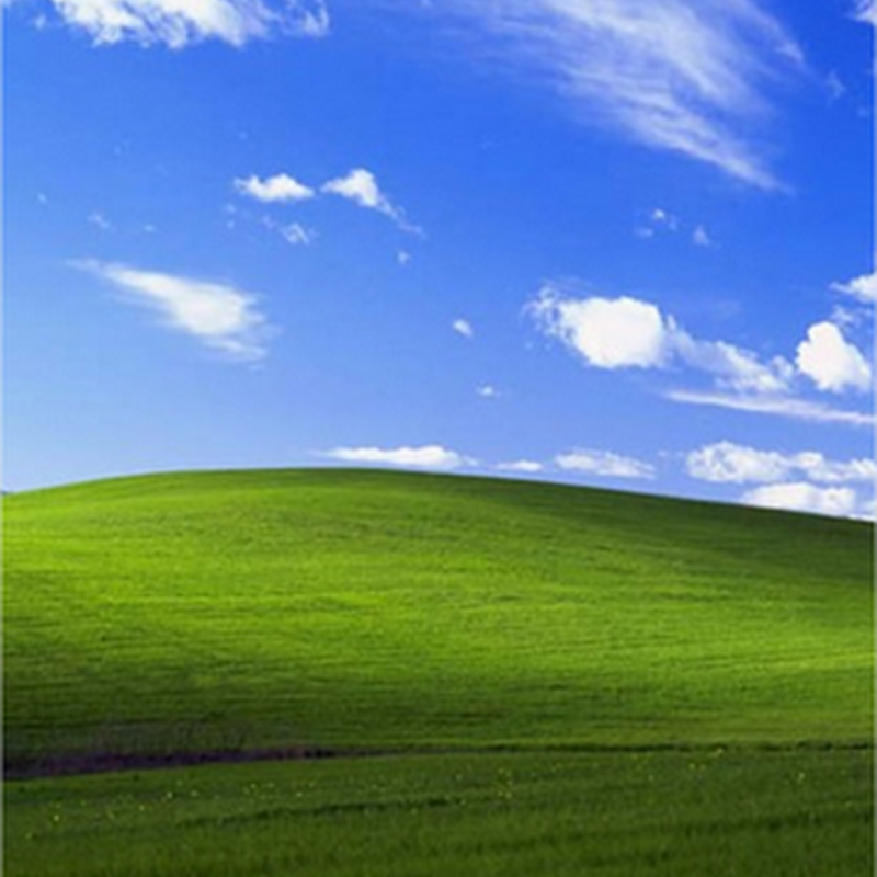 Documental sobre el origen del fondo de pantalla de Windows XP