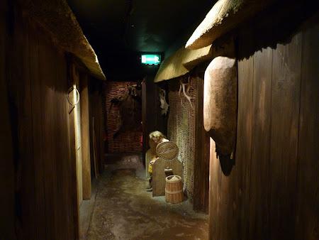 Obiective turistice Irlanda: Muzeu Dublinia sat viking