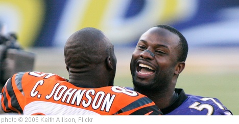 'Chad Johnson, Bart Scott' photo (c) 2006, Keith Allison - license: http://creativecommons.org/licenses/by-sa/2.0/