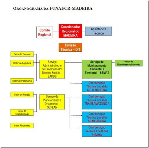 Organograma CR Madeira