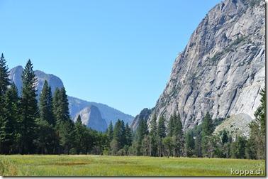 110913 Yosemite NP (9)