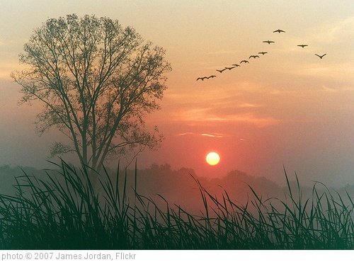 'Autumn dawn' photo (c) 2007, James Jordan - license: http://creativecommons.org/licenses/by-nd/2.0/