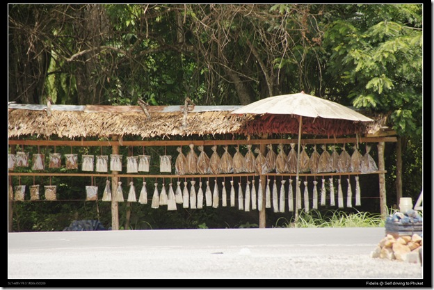 Phuket25