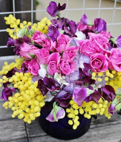acacia 557870_10150794502798413_937021851_n la petite fleur mn