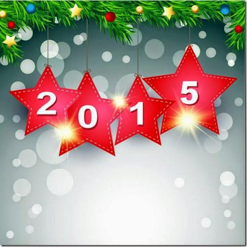 feliz 2015 airesdefiestas com (42)