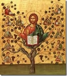 Jesus e a videira