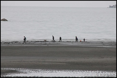 Clam-Digging-at-Clam-Gulch