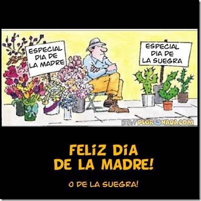 humor suegras (13)