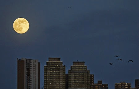 Hong Kong Super Moon