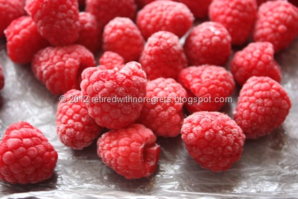 Driscoll's Raspberries - frozen close-up