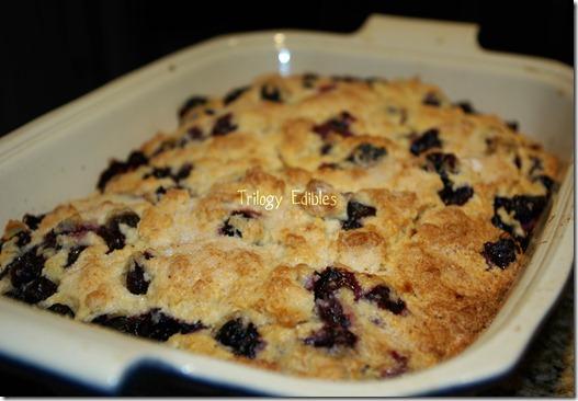 blueberrybuttermilk