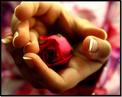 san valentin flores (27)
