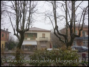 Neve a Padulle - 28 gennaio 2014(2)
