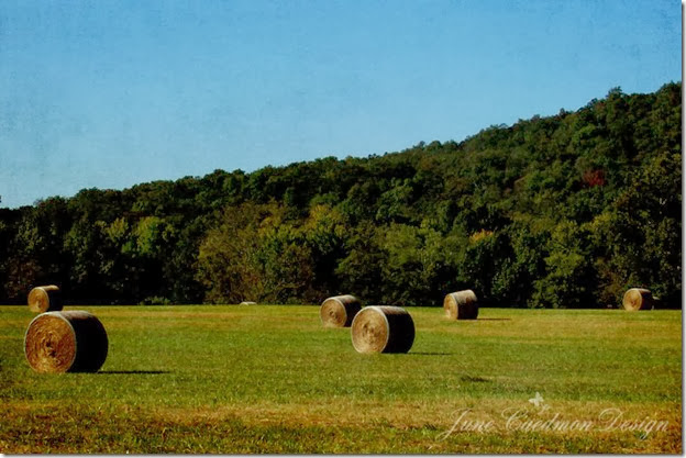 Arkansas_RoundBails