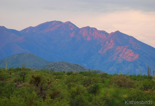 3. Santa rita Mountains-kab