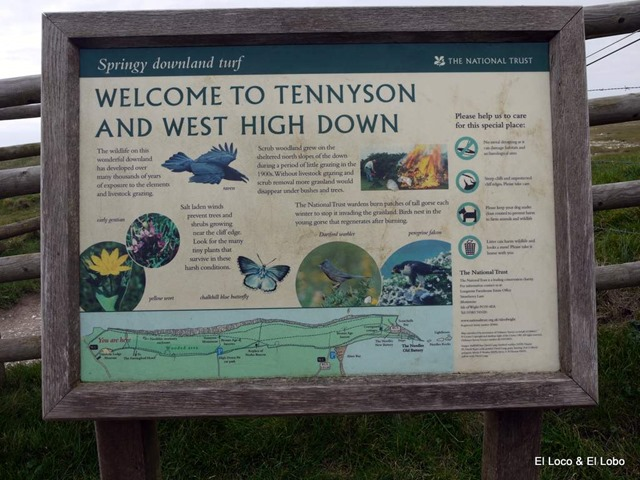 Tennyson and West High Down