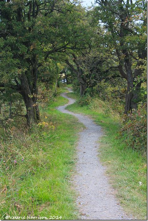 18-path