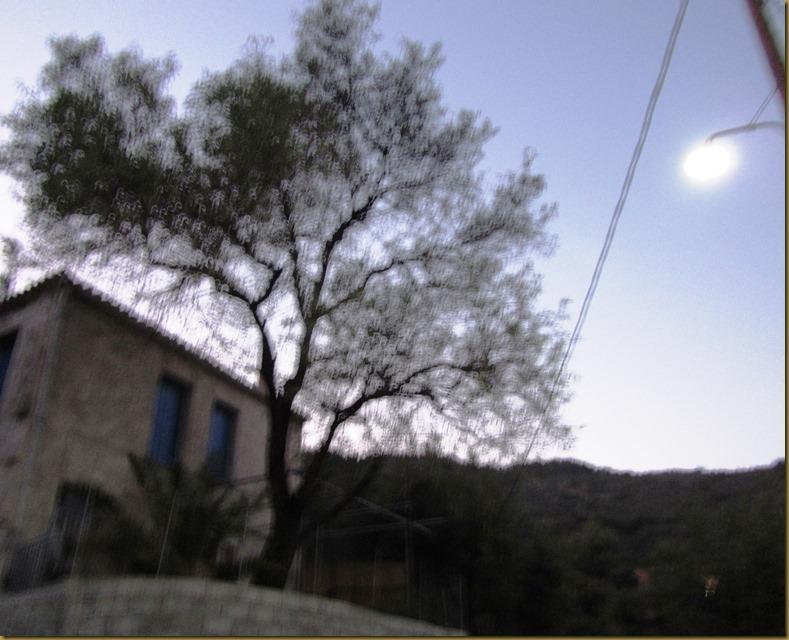 ΠΑΛΑΙΟΧΩΡΙ-ΔΥΤΙΚΑ ΤΟΥ ΧΩΡΙΟΥ