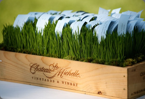 green-wheatgrass-moss-box-place-card boukates