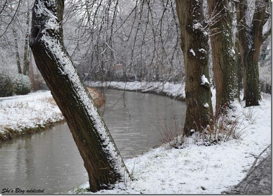 Winter2015 (77)