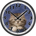 Sweet Cat Clock icon