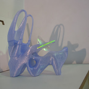 3D printed shoe