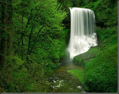 poze cascade