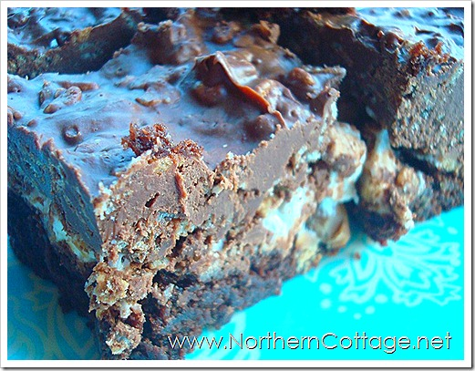yummy everything bars@NorthernCottage.net 005