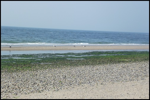 Provincetown 090