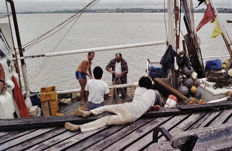 504 pescadores