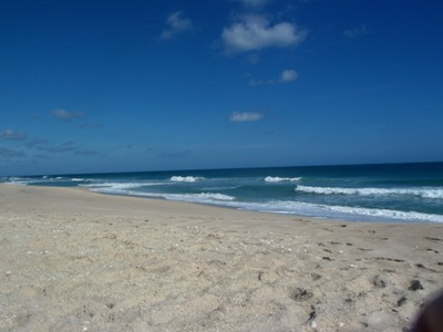 Terrific Beach afternoon 011