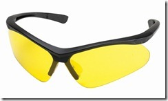 Champion Shooting Glasses 40604
