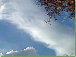 sky101_0011