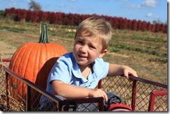 Pumpkin Patch Oct. 2011 050
