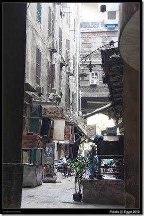 Egypt Day 11_13-2
