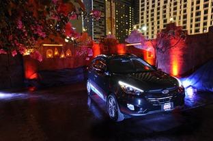 2013 LAIAAS Hyundai Party