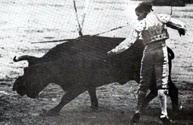 Belmonte natural 003
