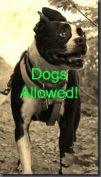 Copy of Copy of dogsyes