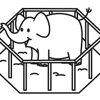 elefante-en-jaula-t18133.jpg