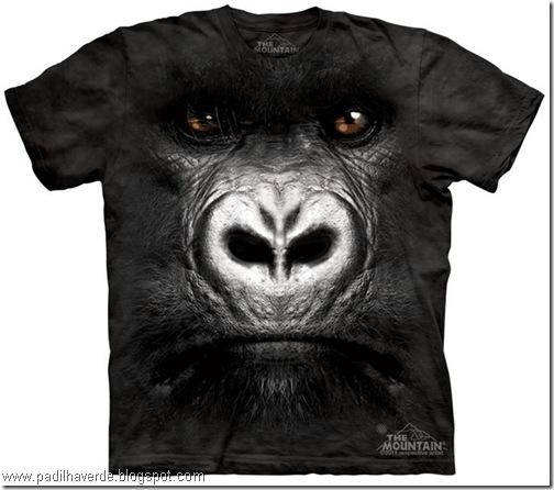 camisetas de Montain-21