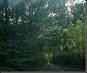 dartmoor 062
