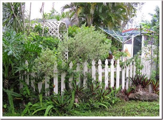 09-22-clothesline-garden