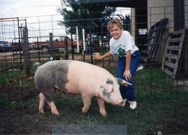 Champion guilt; Reserve Champ Market Hog