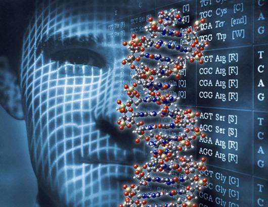 генетика-32