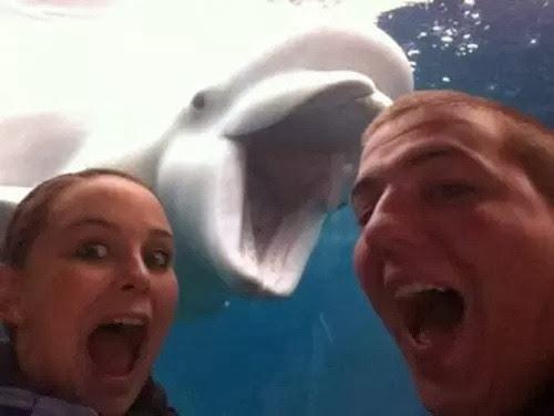 selfie-aquario