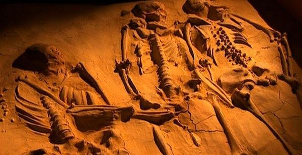 Секс в жизни пещерного человека