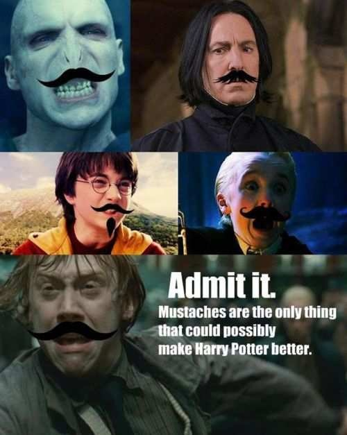 hp mustaches